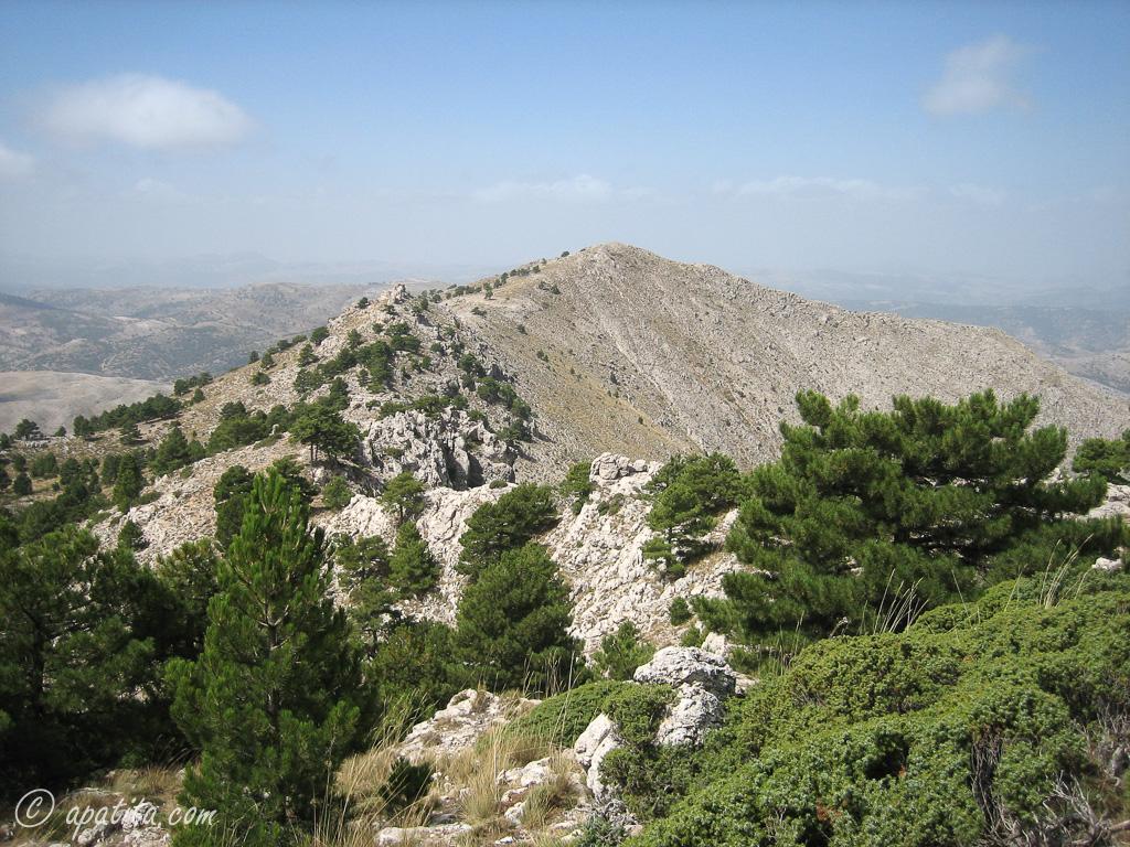 Sierra de las cabras recorrido circular por la sierra de - Sierra circular pequena ...