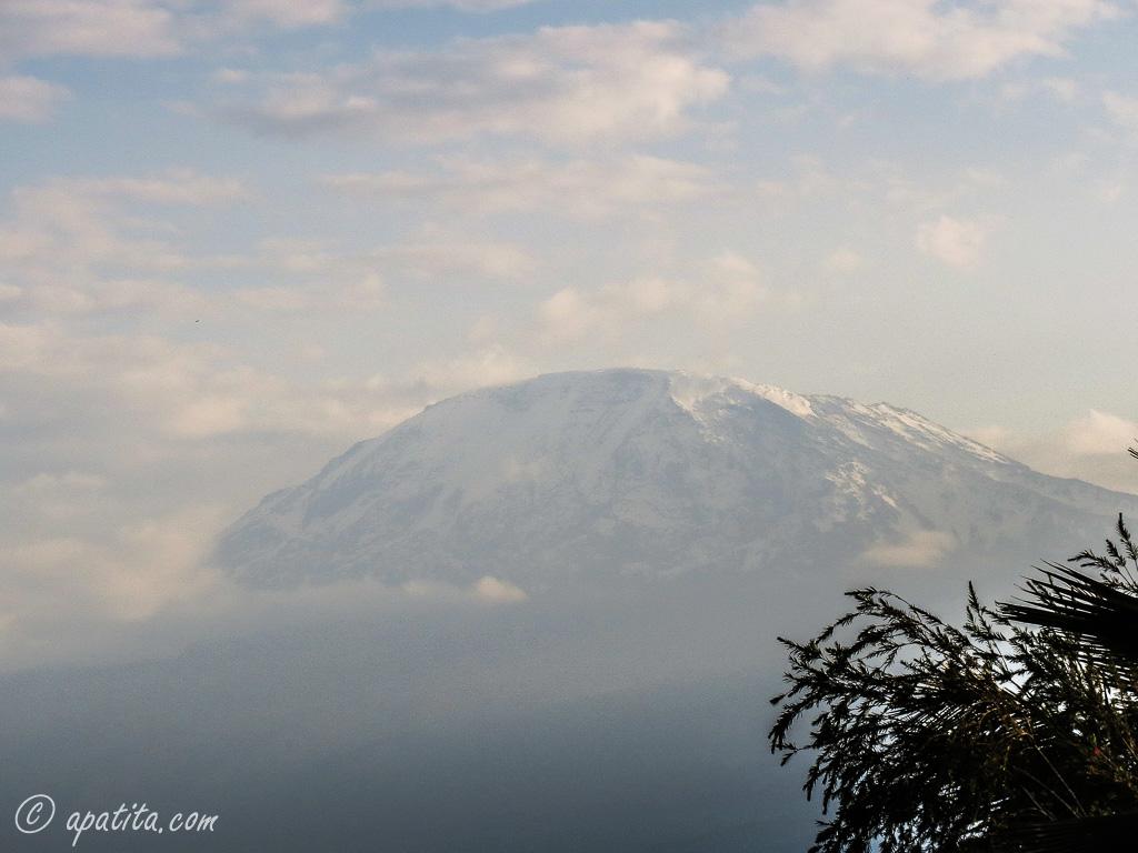 Vista del Kilimanjaro desde Moshi