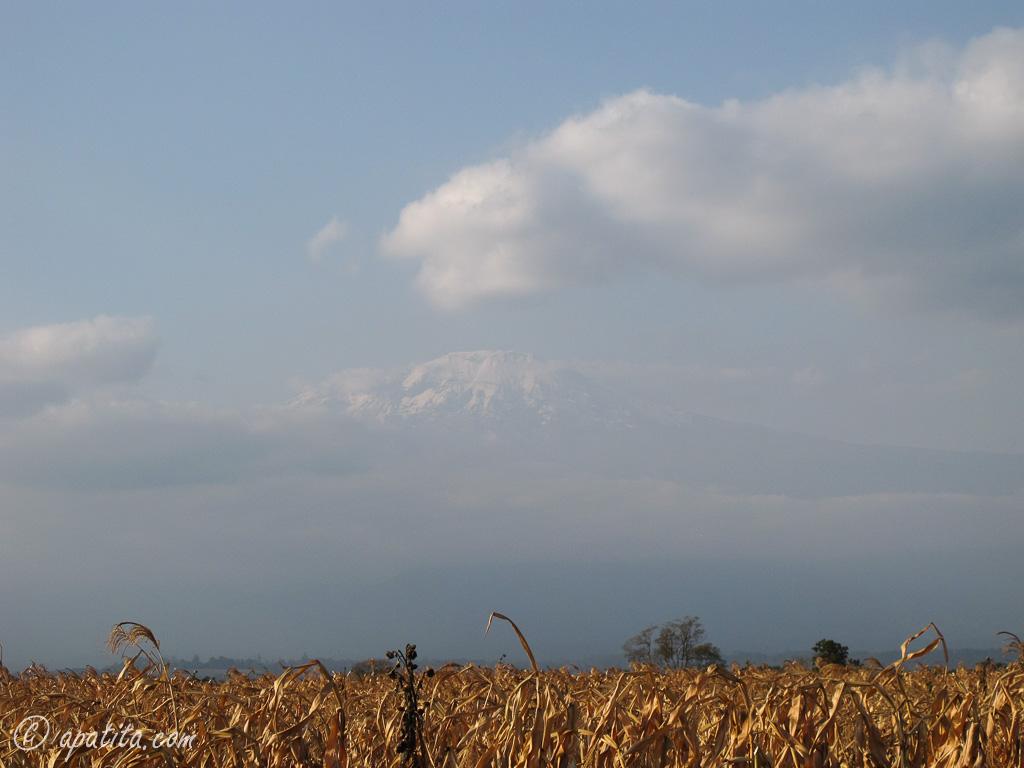 Kilimanjaro Tours Moshi